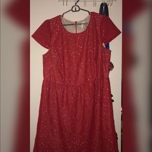 Dresses & Skirts - Lacey Dress Size 16W